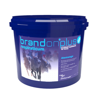 Brandon ®plus respiraticum - Bij ademwegproblemen en voor de ondersteuning van het immuunsysteem