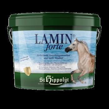 Lamin Forte - Weefselherstel en vitaliteit