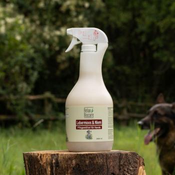 Lebermoos & Niem für Hunde - Bij haarverlies, jeuk door parasieten, insecten - of mijtenbesmetting, afweerverzwakte huid met neiging tot schimmelinfectie