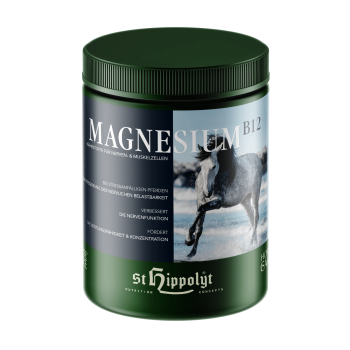 Magnesium B12 - Voeding voor zenuw en spiercellen