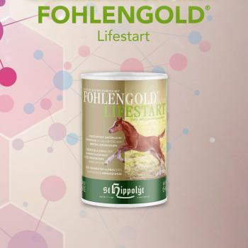 Fohlengold® LifeStart- Starthulp voor veulens